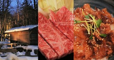 平湯溫泉美食│平價好吃的飛驒牛燒肉+好吃到升天牛肉丼!有私人溫泉湯屋~平湯車站旁ひらゆの森~平湯之森