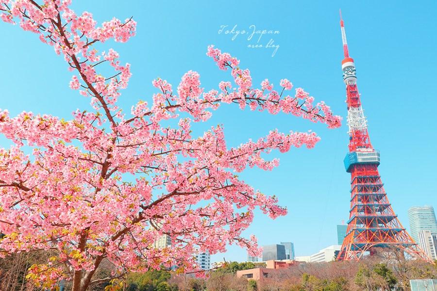 東京賞櫻|增上寺、芝公園櫻之東京鐵塔~很有日劇感的春日場景~一棵足矣