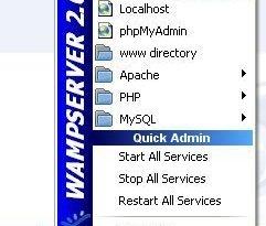Como instalar Wamp