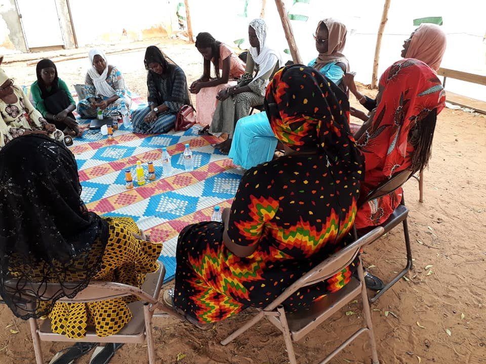 Projection-débat « Voix des femmes » dans le village de Touldé, près de Bogué, dans la Région (Wilaya) du Brakna le 19 septembre 2018, sur le thème des mariages précoces.