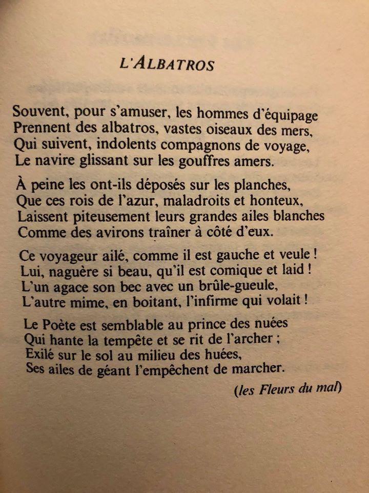 Poème » Le Râleur