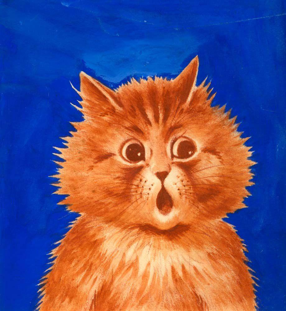 Posti gattini su facebook? Potresti avere la toxoplasmosi