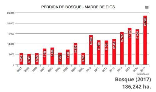 Pérou - La déforestation de Madre de Dios a été la plus importante en 17 ans