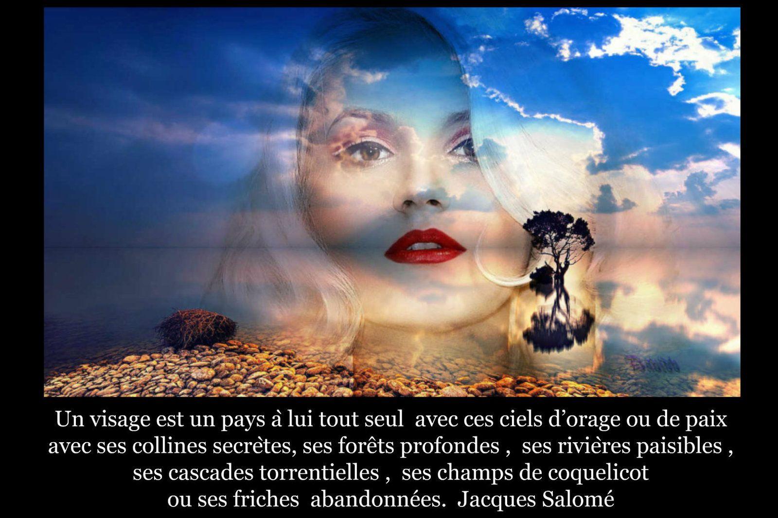 Image citation 41
