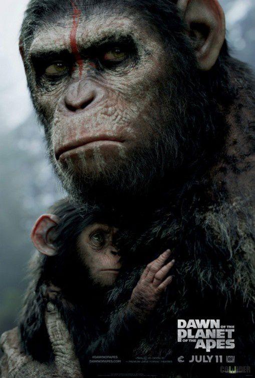 La Planète Des Singes : L'affrontement : planète, singes, l'affrontement, Critique], Planète, Singes, L'Affrontement, L'Ecran, Miroir