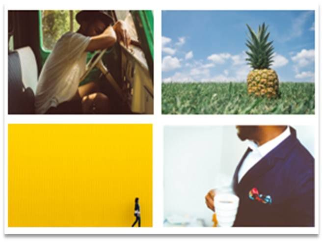 Pas de Sélection thématique // Galerie de photos Propose des photos, des images vectorielles et des vidéos