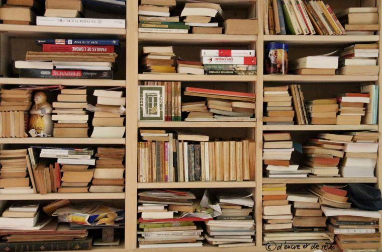 La bibliothèque des gens #1: La bibliothèque de Peter