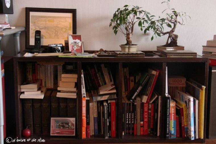 La Bibliothèque des Gens #16 : La Bibliothèque de Babé