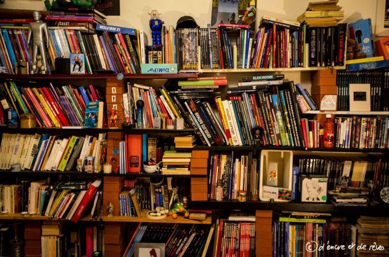 Bibliothèque des gens #17 : La bibliothèque de Erik et Loran