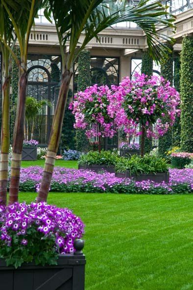 decoration jardin arbres fleurs