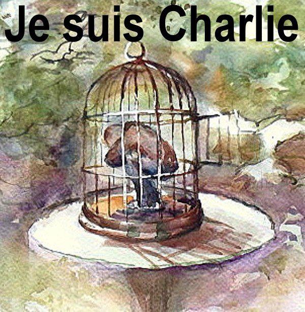 """Résultat de recherche d'images pour """"liberté emprisonnée"""""""