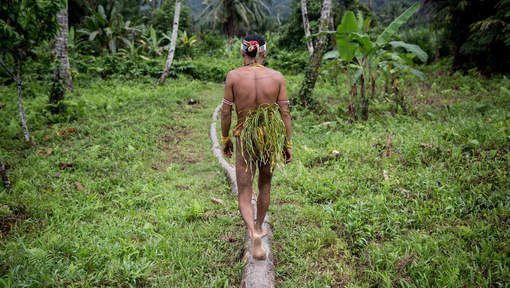 L'Indonésie dépasse le Brésil dans l'inquiétante déforestation