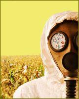 Alimentación, Ecologia y Salud