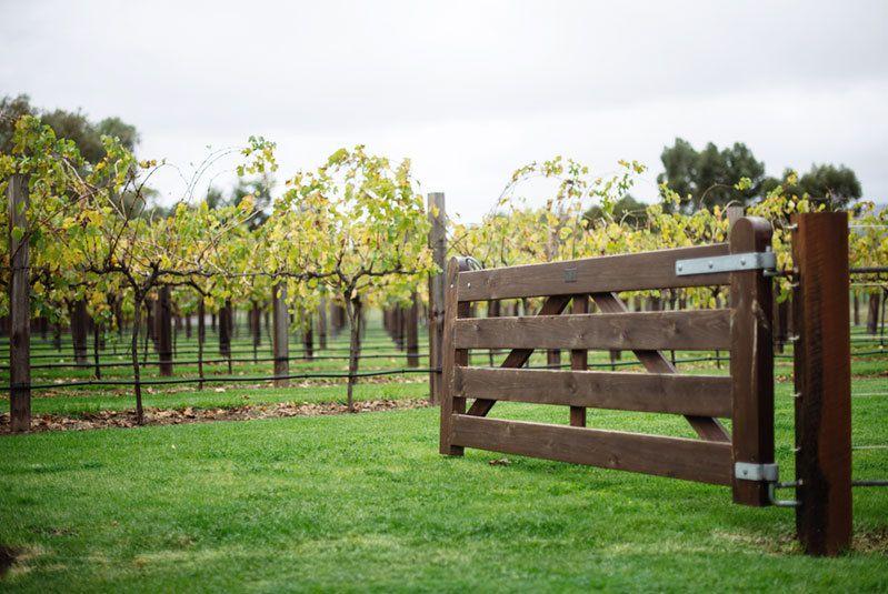 Wine Of The Week: Jacob's Creek Double Barrel Shiraz