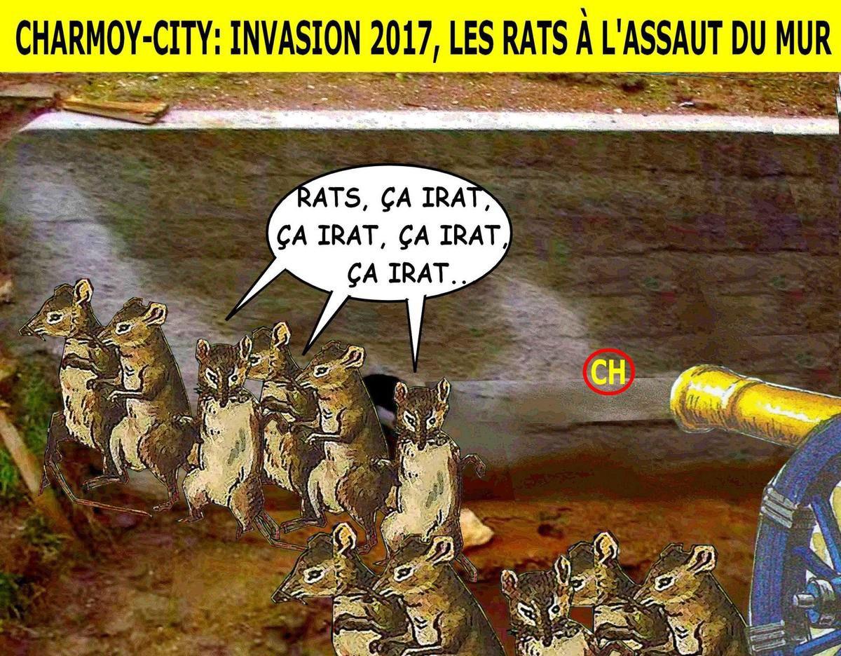 """Résultat de recherche d'images pour """"invasion de rats"""""""