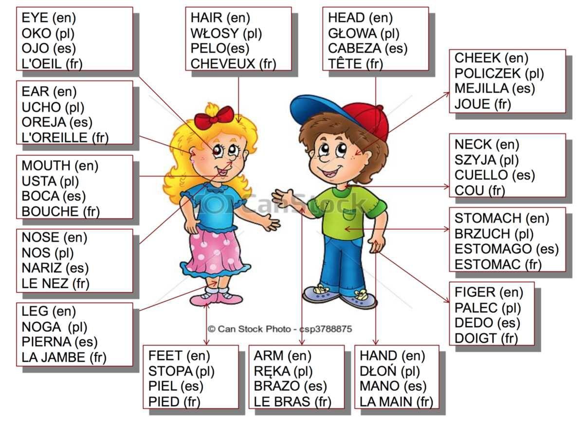 Amt1 Language