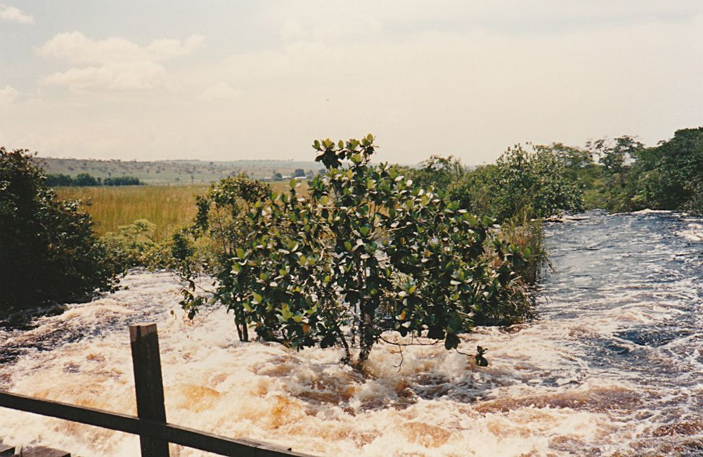 Passage d'un pont vers Feshi