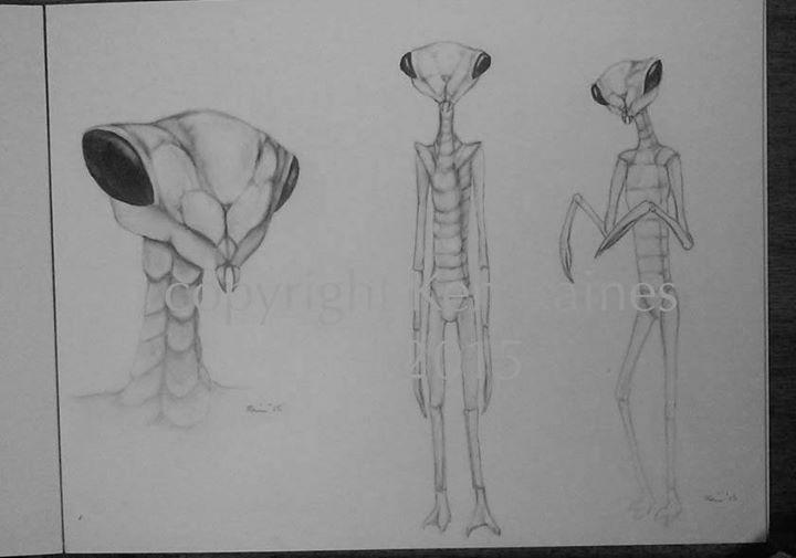 Les extraterrestres de type Insectes ou Insectoïdes / Insectoïdiens (mantes religieuses, fourmis, papillons etc)