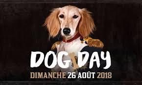 26 Août : 2 journées à célébrer : la journée mondiale du chien et la journée internationale du topless