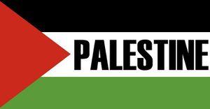Journée internationale de solidarité avec les prisonniers politiques palestiniens