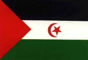 Des organisations internationales préoccupées par la situation des prisonniers politiques sahraouis dans les prisons marocaines
