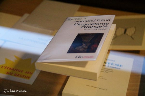 Balade Littéraire #15 : Exposition le Livre dans le Livre - Toulouse (jusqu'au 16/01/16)