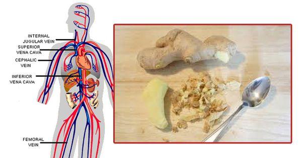 Ce sont les choses incroyables qui arrivent à votre corps quand vous commencez à manger le gingembre tous les jours