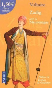 Micromegas---Zadig.jpg
