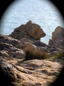Le-Croisic-20121028-00962.jpg