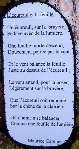 Poésie L'écureuil Et La Feuille : poésie, l'écureuil, feuille, Carnet, Poétique, L'Ecureuil, Teddypatch