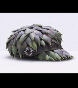 une-casquette-realisee-avec-des-feuilles-d-artichaut_41168_.jpg