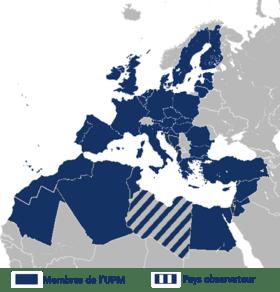 union_pour_la_Mediterranee.png