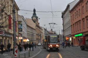 Prague-3ejour301112-121--c-Brigitte-Lachaud-.JPG