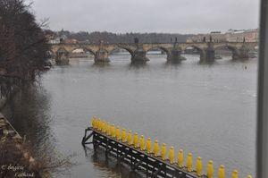 Prague281112-1erjour-079--c-Brigitte-Lachaud-.JPG