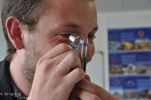 gemmologie-nice-04072012-009--c-Brigitte-Lachaud-.JPG