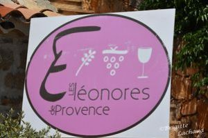 les-eleonores-Fayence250613-BL-108.JPG