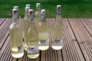 holunderblütenlikör - flaschen