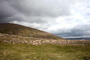 Schottland 2081