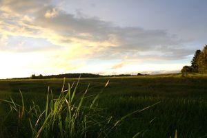 Umland:Landschaft 2466