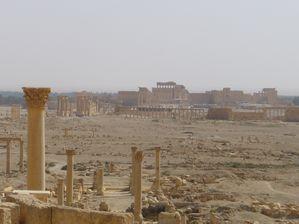 Palmyre--26-.JPG