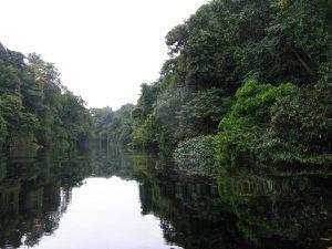 Omboué - Rivière Mpivié