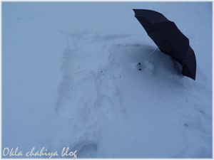 neige_2.jpg