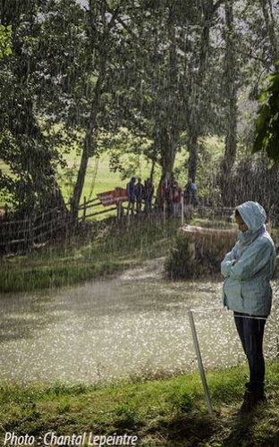 La-pluie.jpg