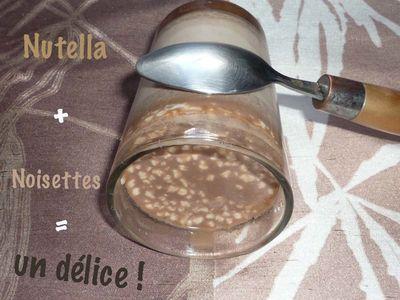 yaourt nutella noisettes