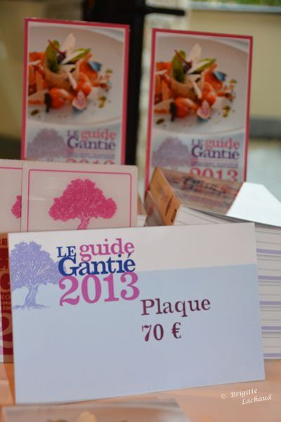 Guide-gantie-terre-blanche-