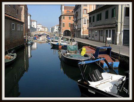 Betterave de Chioggia au marché de Venise ; étape incontournable des gourmands 1