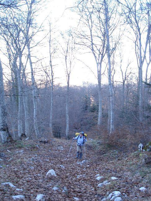 Vers le Pic du Gar : le col des Ares (797 m) 7