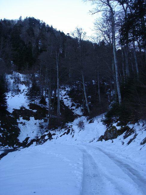 Vers le Pic du Gar : le col des Ares (797 m) 11
