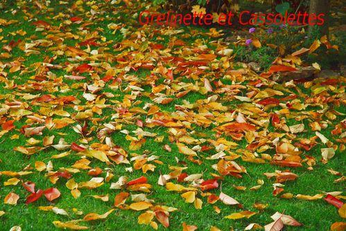 tapis de feuilles mortes au jardin