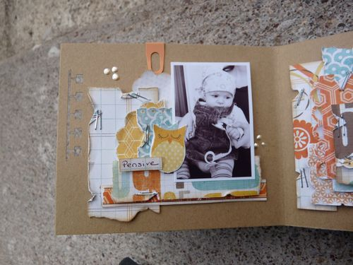 mini-album-janvier-2011---portrait-d-une-star--28-.JPG